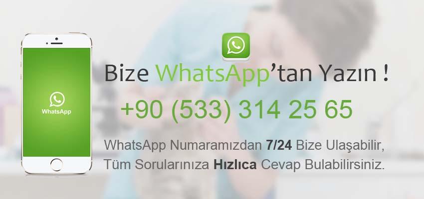 Veteriner Whatsapp Numaraları
